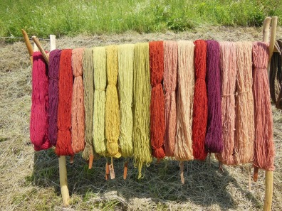 wool-143923_1280